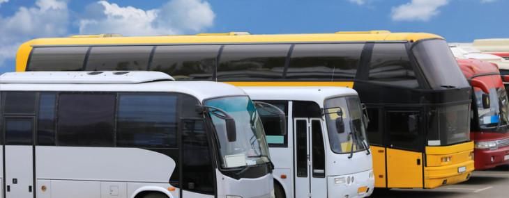 Fernbusse im Vergleich