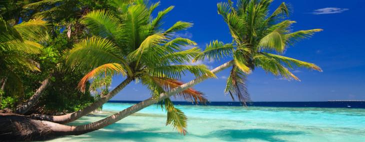 Die Malediven als perfekter Ort für die Flitterwochen